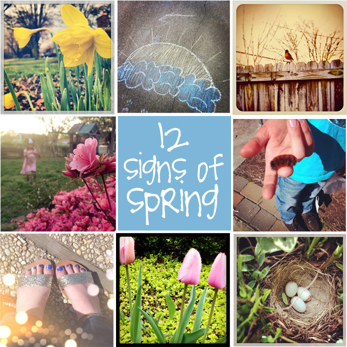 Signs Of Spring Creative Gift Ideas Amp News At Catching